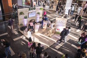 IRSA Propiedades Comerciales celebró el Día Mundial del Ambiente con distintas actividades