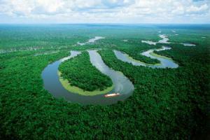 Impulsan la conectividad ambiental y social en la Amazonia