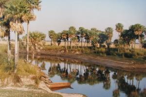 Santa Fe impulsa el manejo sustentable de los recursos forestales